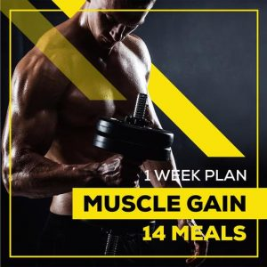 weight loss meal plan 1 WEEK MUSCLE GAIN 14 MEALS
